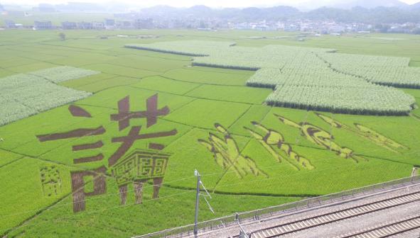 广西宾阳稻田画设计作品《诚信宾阳》